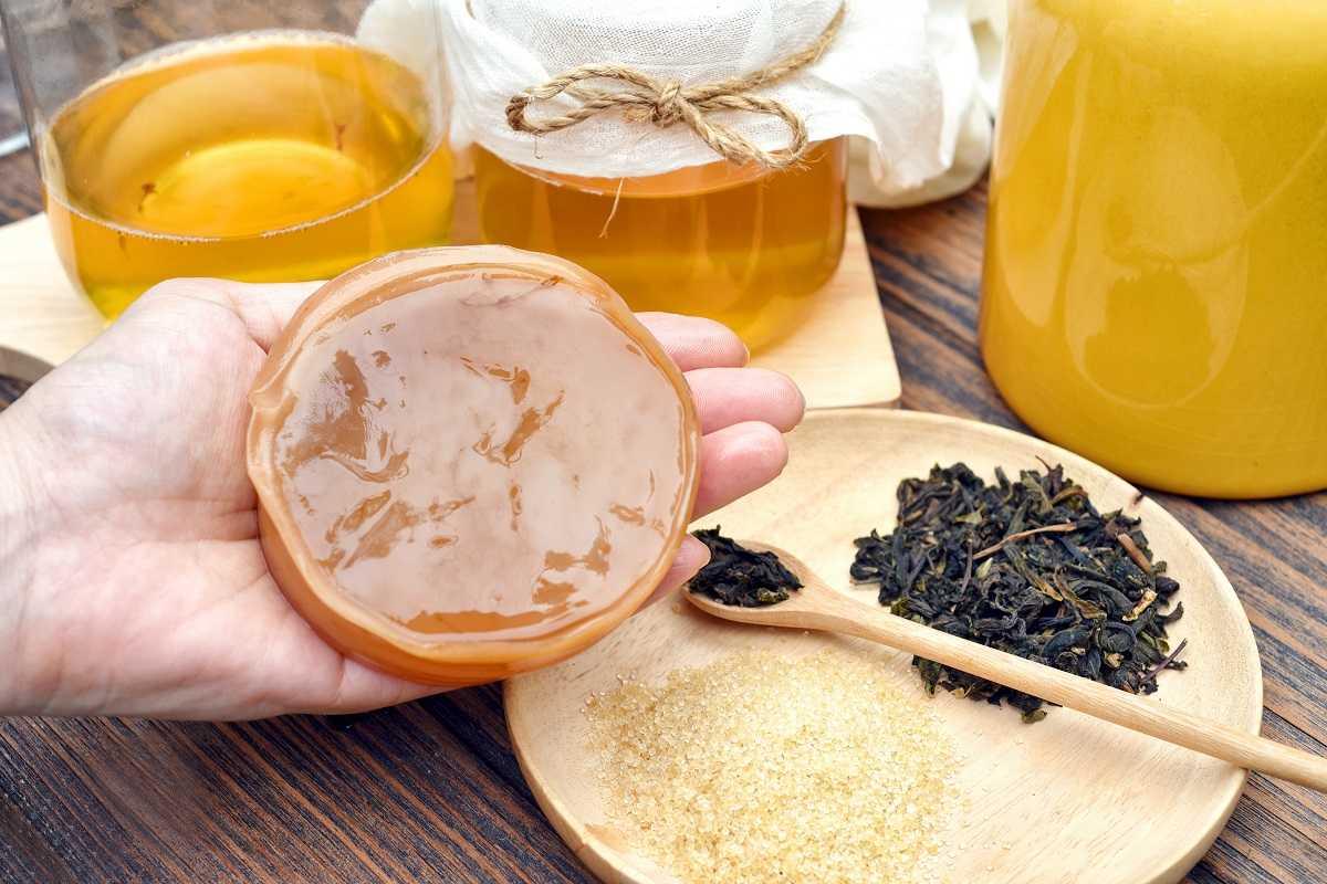 Kombucha-grzybek-herbaciany-na-straży-odporności